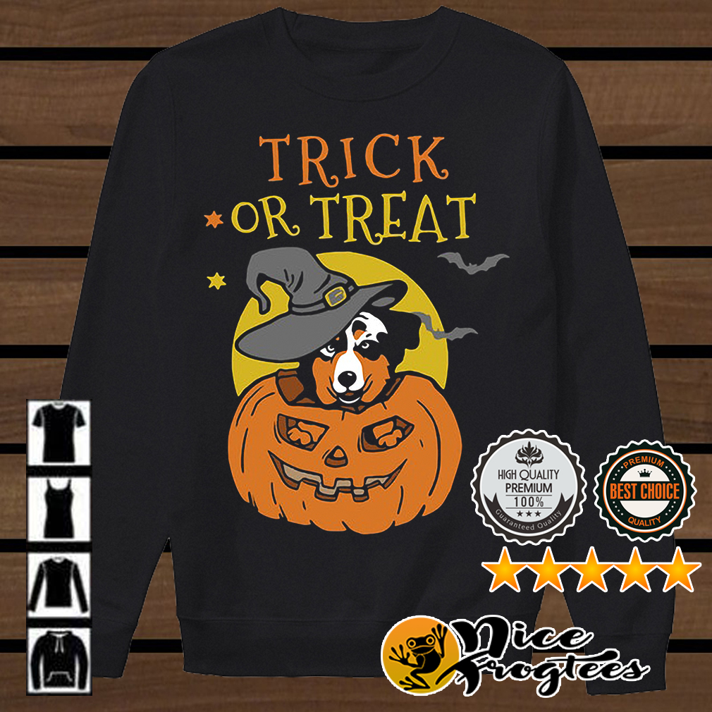 Australian Shepherd Halloween pumpkin trick or treat shirt