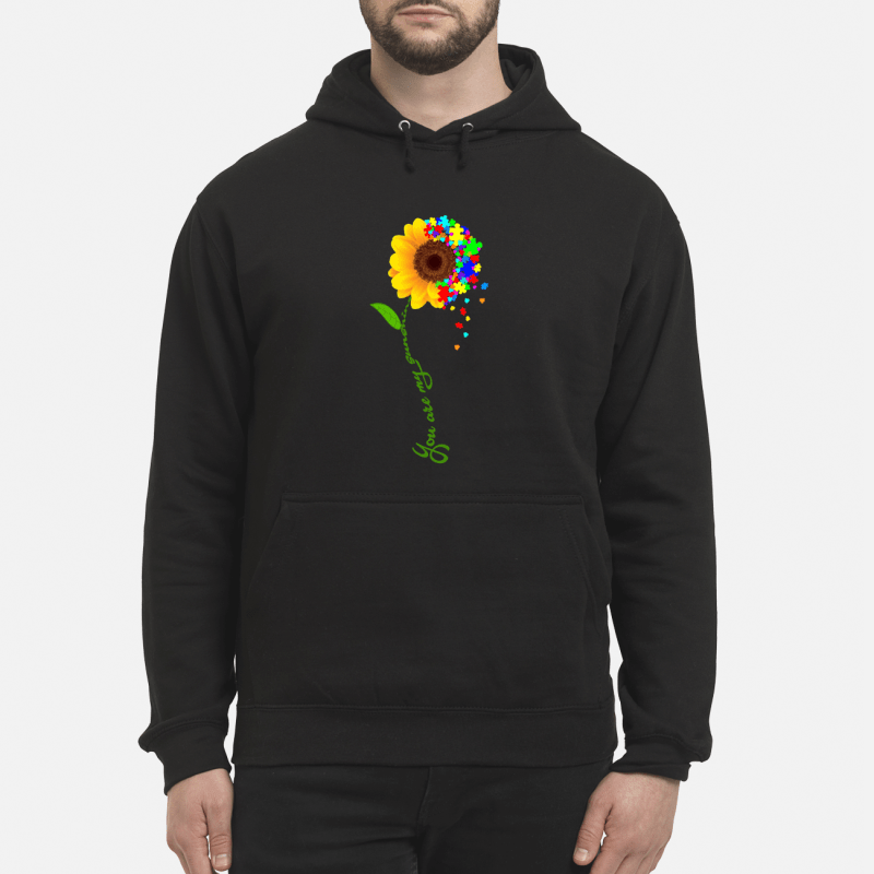Autism sunflower you are my sunshine Hoodie