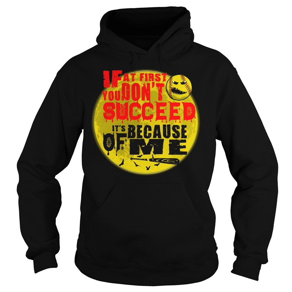 Baseball If at first you don't succeed It's because of me Hoodie