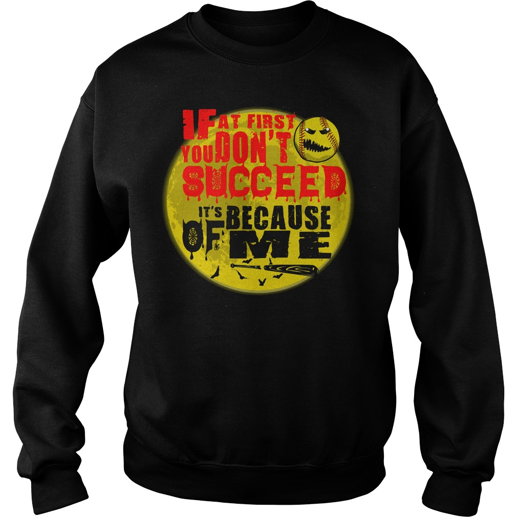 Baseball If at first you don't succeed It's because of me Sweater
