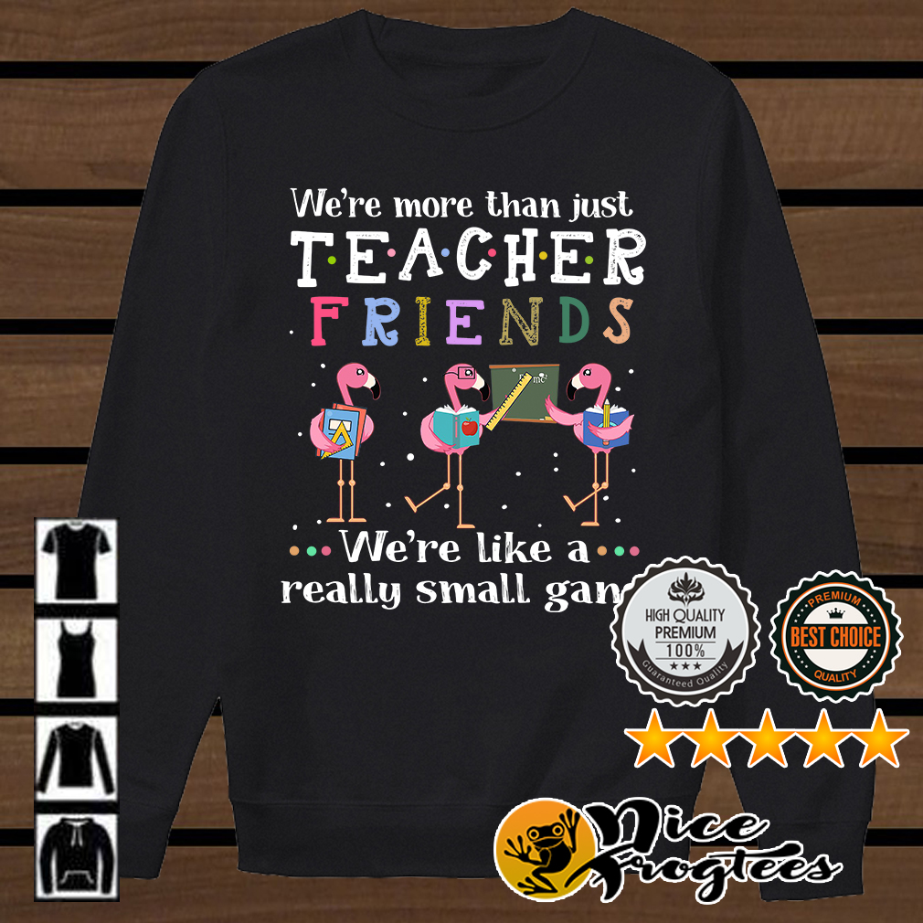 Flamingo we're more than just teacher friends we're like a really small gang shirt