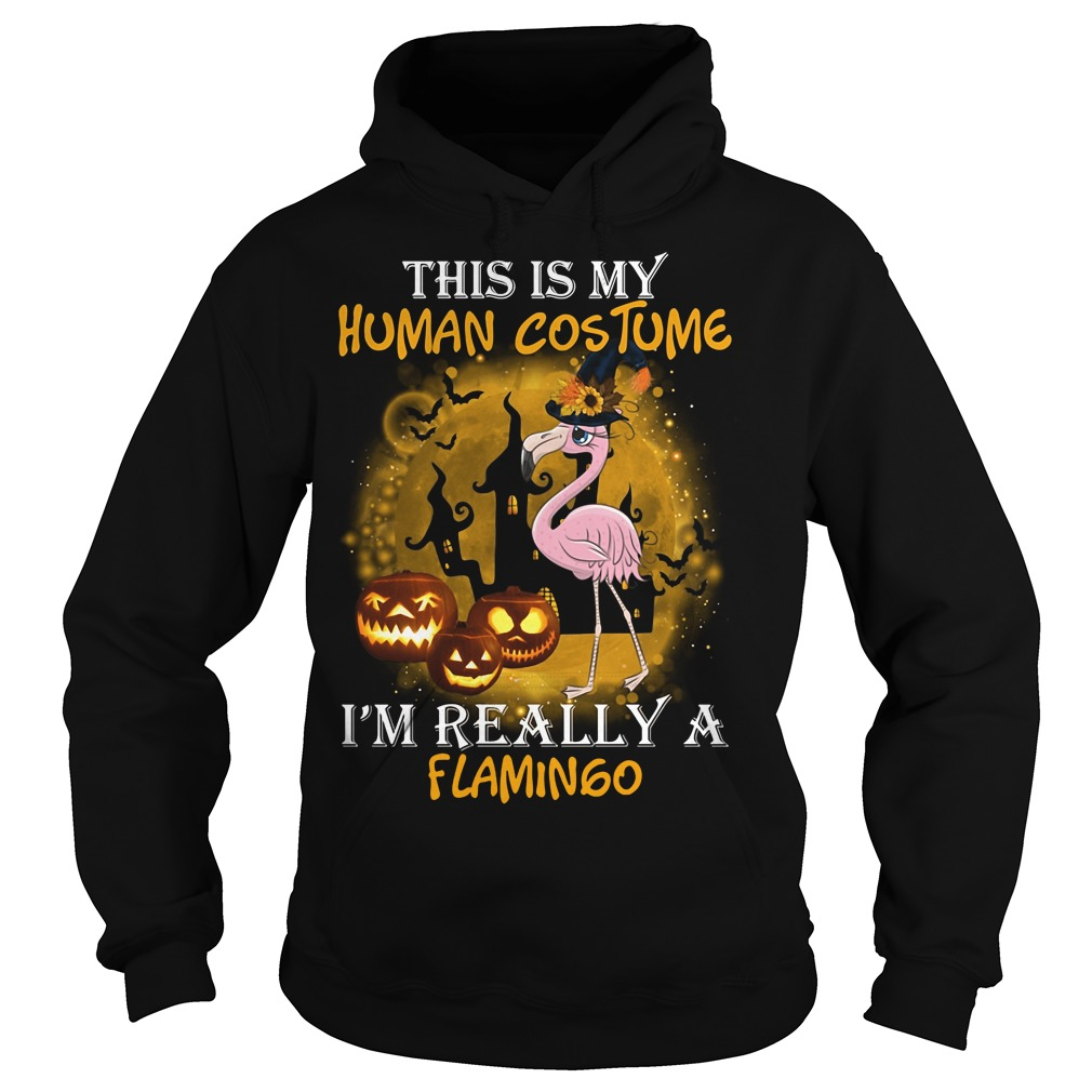This is my human costume I'm really a Flamingo Hoodie