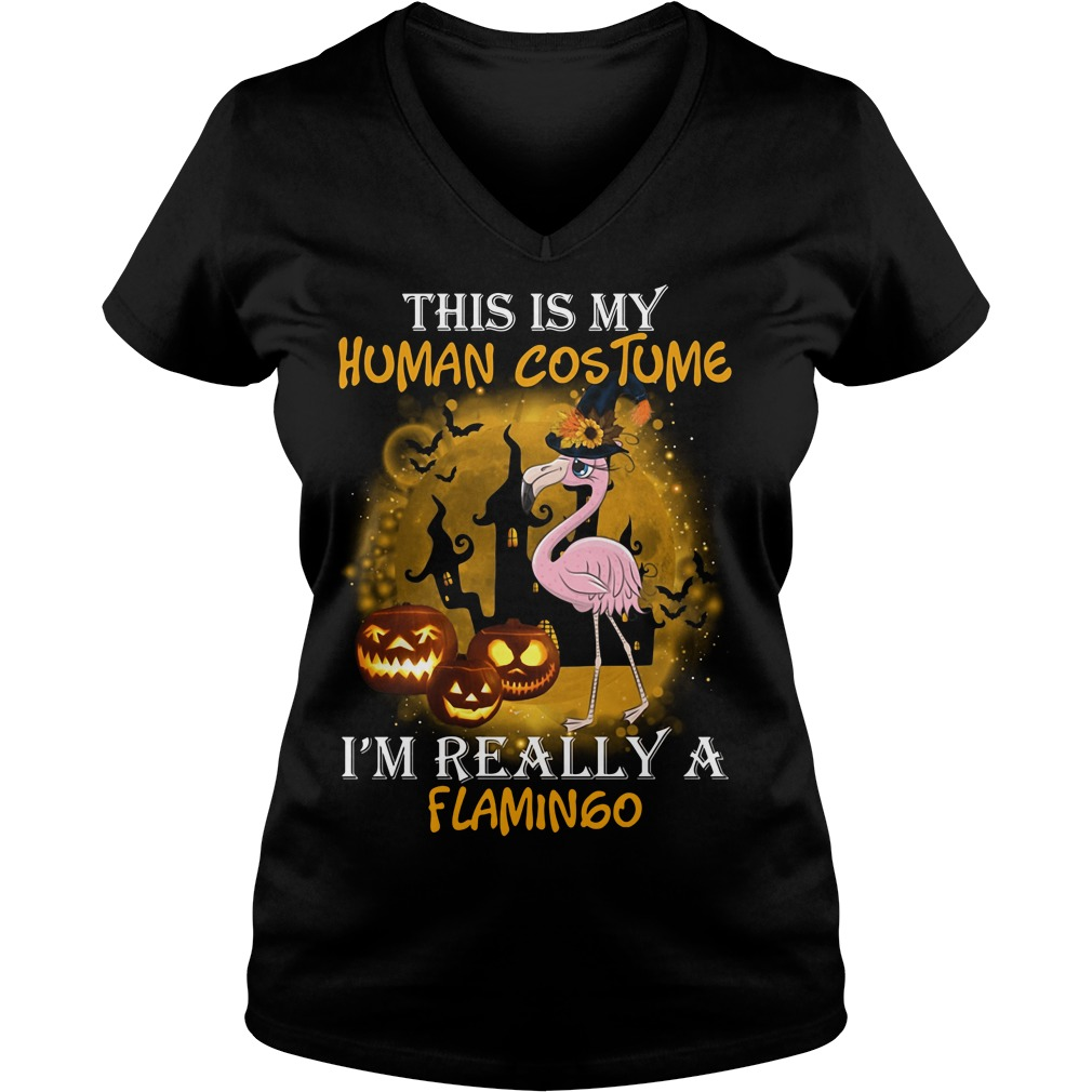 This is my human costume I'm really a Flamingo V-neck T-shirt