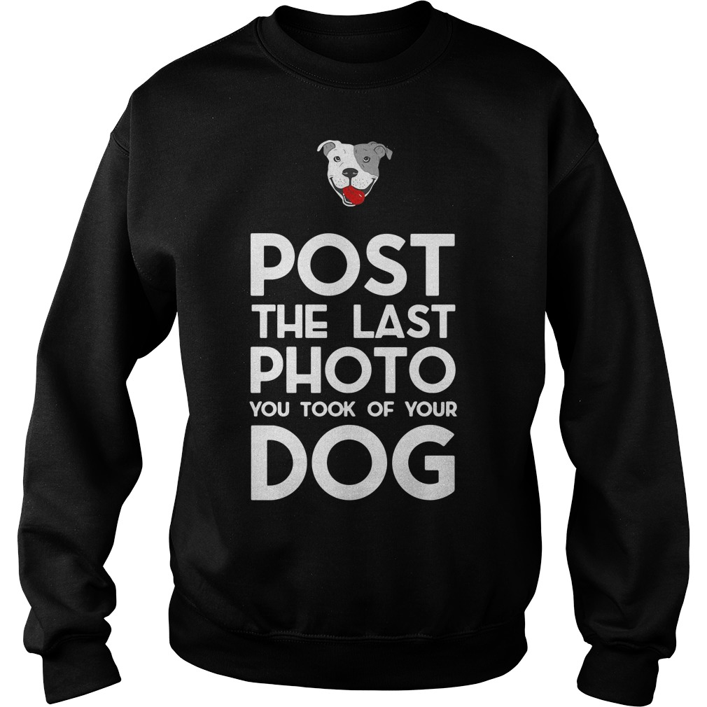 Pitbull post the last photo you took of your dog Sweater